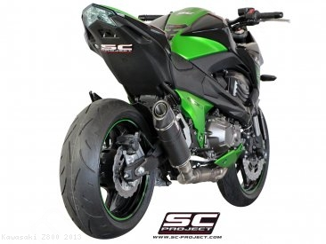 Oval Exhaust by SC-Project Kawasaki / Z800 / 2013